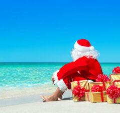 Christmas & New Year break